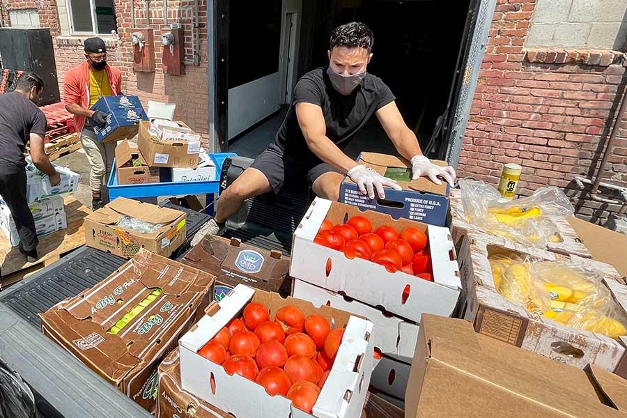 People loading fresh produce